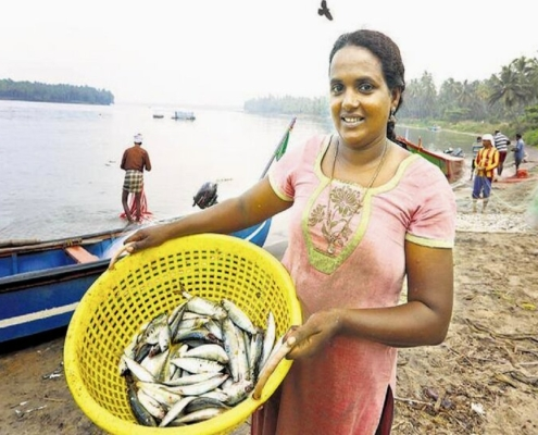 Rekha Karthikeyan is India's first and only fisherwoman who has a licence from the Central Marine Fisheries Research Institute (CMFRI) for deep sea fishing.